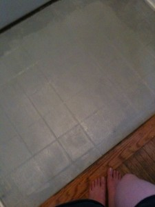 Freshly painted stamped concrete in the entryway. When I took this, I was thinking I need cutesy trim.
