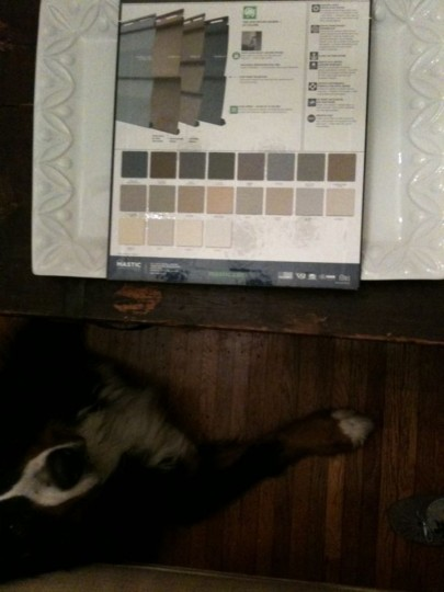 Late night with Cody weighing heavily over my siding color options.