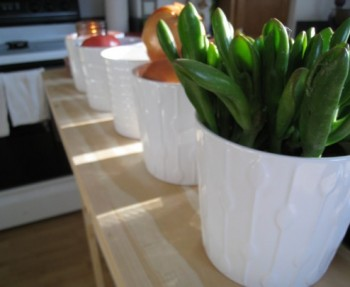 White pots from IKEA.