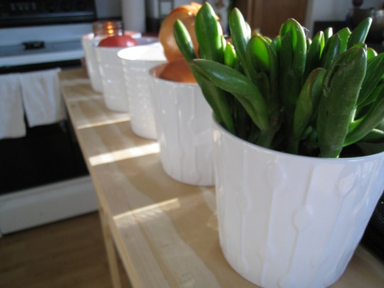 Shown: White IKEA ceramic pots on my kitchen island. I also have larger, smaller, and taller ones. Really, I have a lot of them.