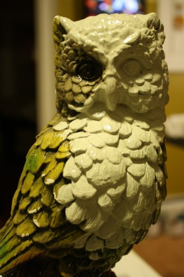 Half-painted owl face.