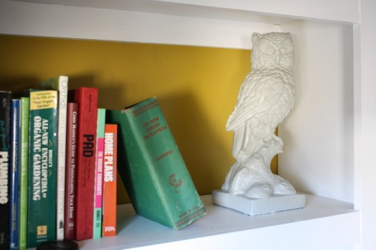 Gray owl. On the built-in shelving for now.