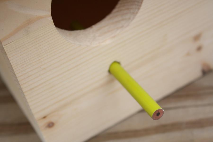 Pencil perch on the birdhouse.