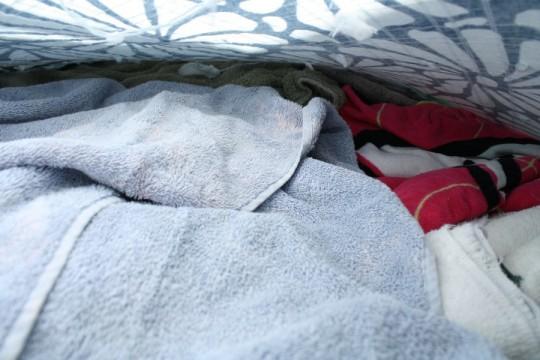 Inside the dog bed.