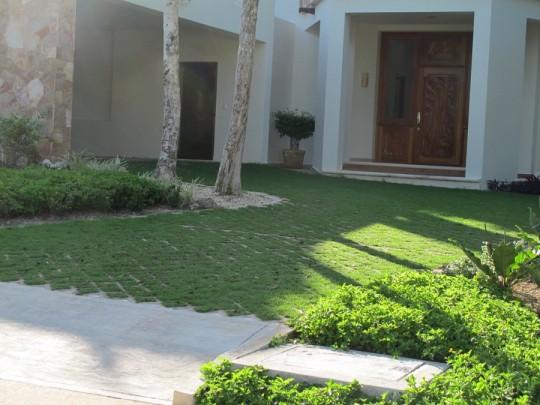 Driveway or grassy yard?