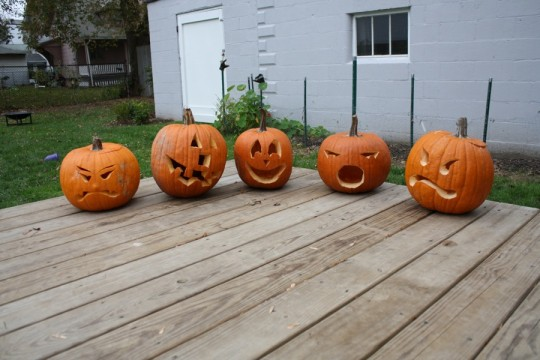 Pumpkins, 2011. Mine are always happy and clownish.