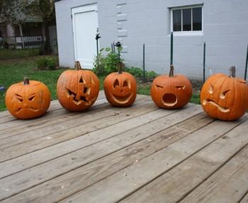 Pumpkins, 2011