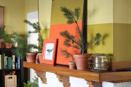 Pine branch decor on the mantle.