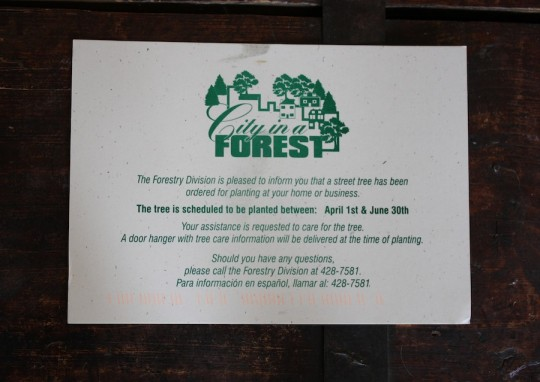 Ooh, forestry department postcard!