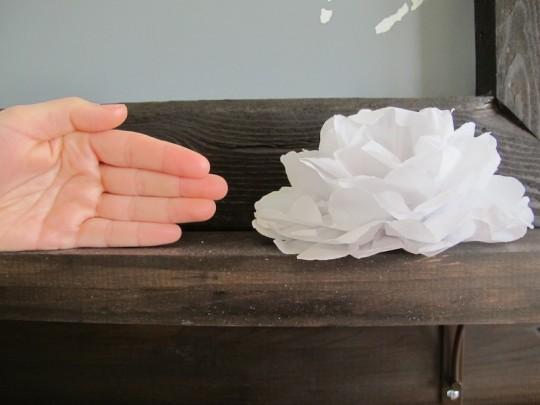 DIY paper flower tutorial.