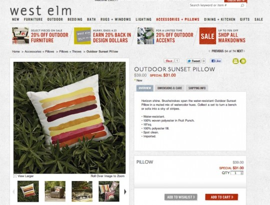West Elm Sunset Pillow