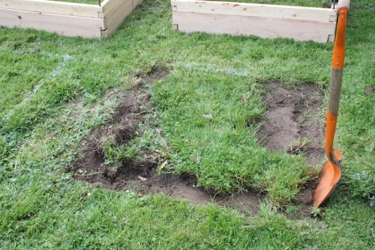 Removing grass for the planter boxes.