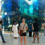 Seriously big aquarium at the Morocco Mall.