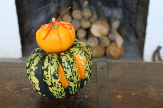 Getting squashy for autumn.