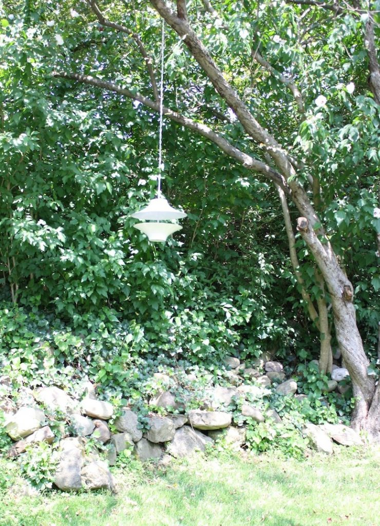 Pretty CB2 bird feeder in the backyard!