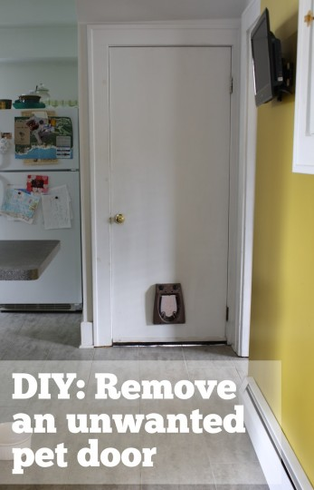 How to remove a pet door from a hollow-core interior door. A simple DIY!