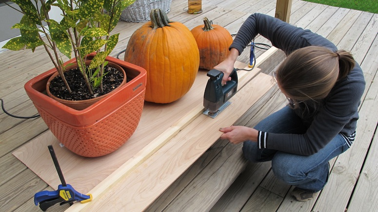 I used a jigsaw and a guide (and pumpkins and plants for weight) to cut through a piece of plywood.