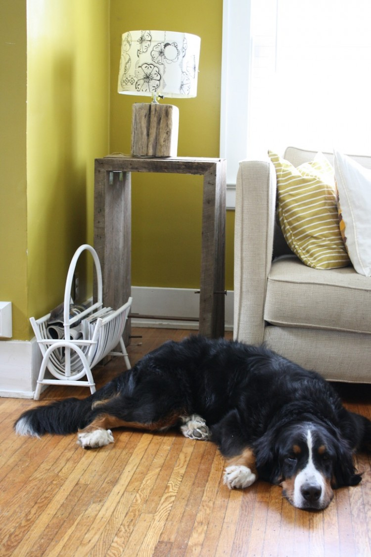 A bentwood magazine rack and dust collector.
