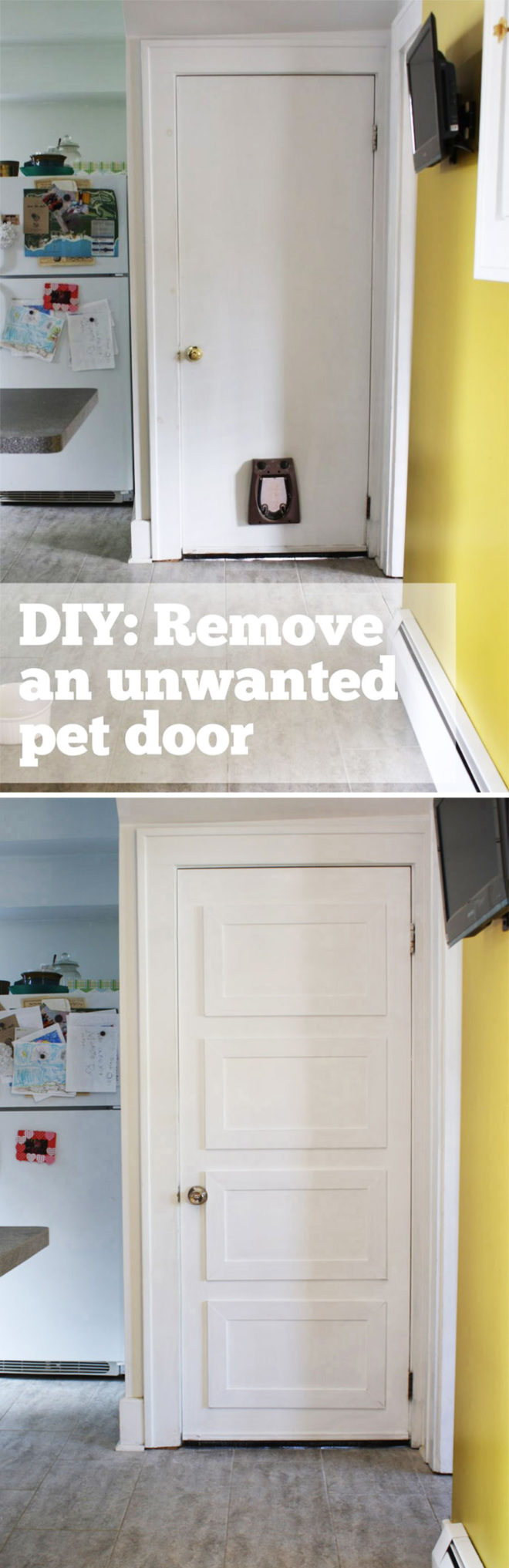 How to remove a pet door and cover the hole.