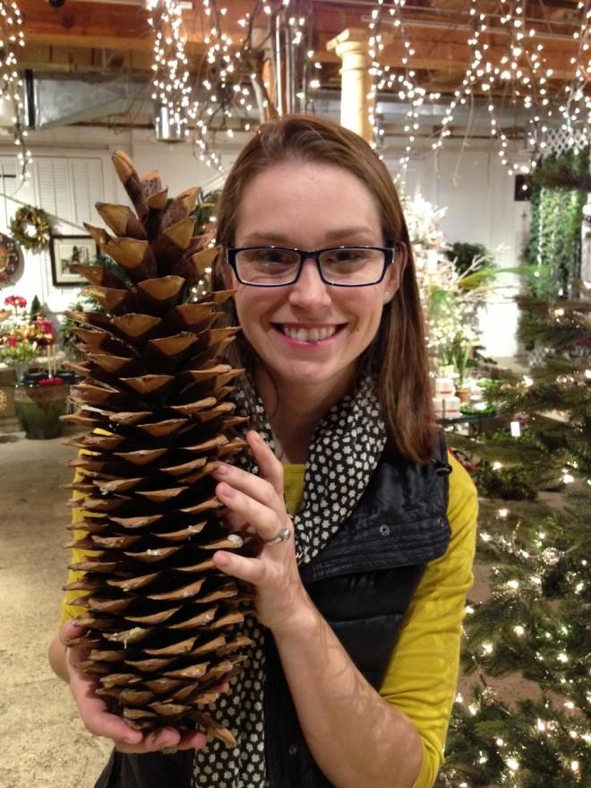 Whoa, giant pine cones!