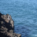 I think these fisherman put the size of the cliffs to scale. We couldn't figure out how they got down there.