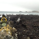 Elvis and the lava rocks.