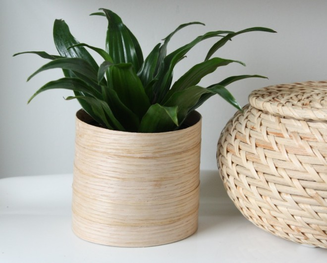 Real wood veneer edging becomes a modern wooden planter.