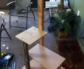How to build a DIY cat tower