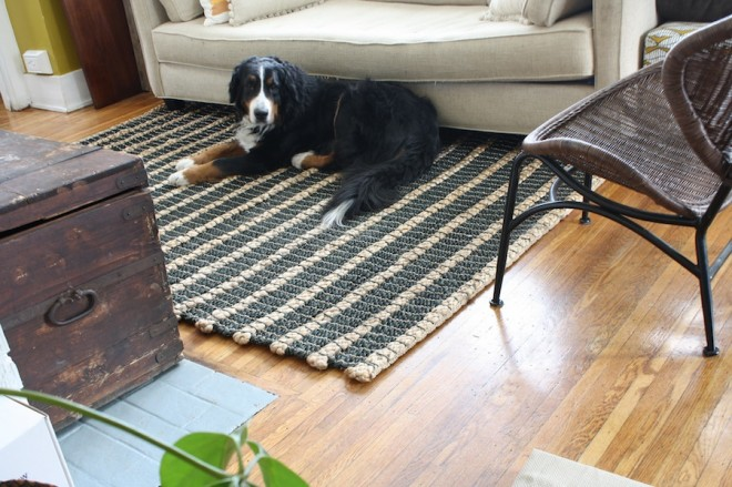 Our new West Elm area rug is just a little too short.