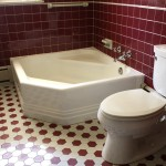 The legendary bath tub (and a very large toilet).