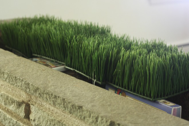 Testing out the faux-grass in our flagstone planter.