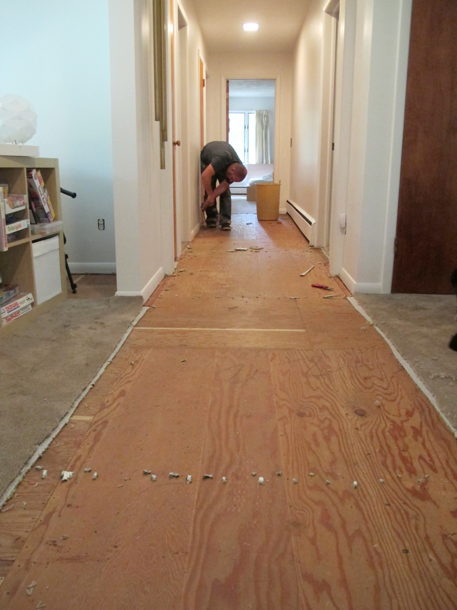 Undercutting door jambs and prepping hallway for carpet for How long should carpet last