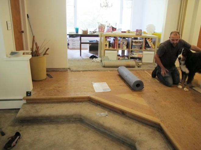 Removing carpet right around to the front doorway.