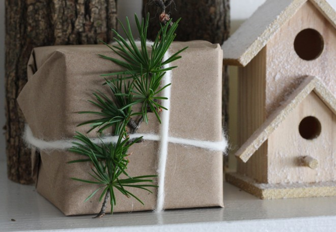 Tamarack/Larch pine branch used in gift wrapping.