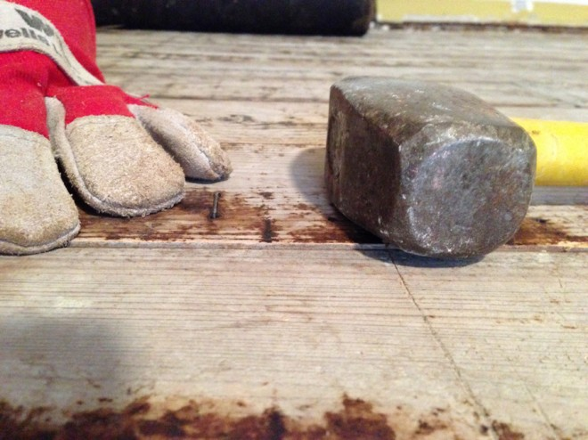 Removing nails from the subfloor.