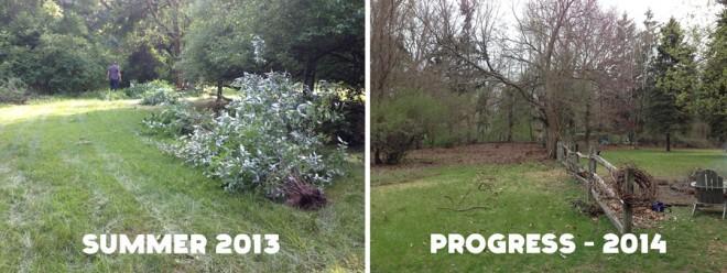 Yard progress, Spring 2014
