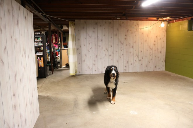 Cody in the basement art room.