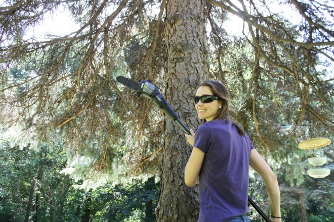 Learn how to prune low hanging branches with an extendable pole saw.