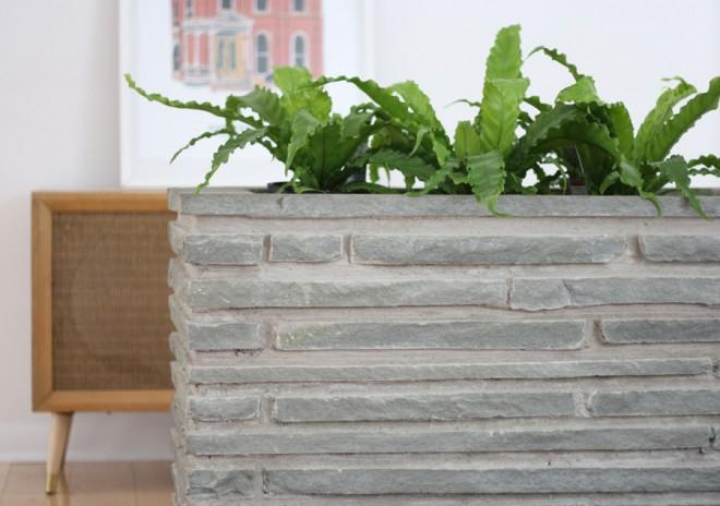 Indoor ferns for a midcentury stone indoor planter.