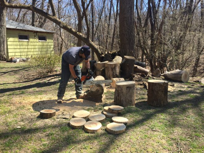 Cutting logs for garden stepping stones.