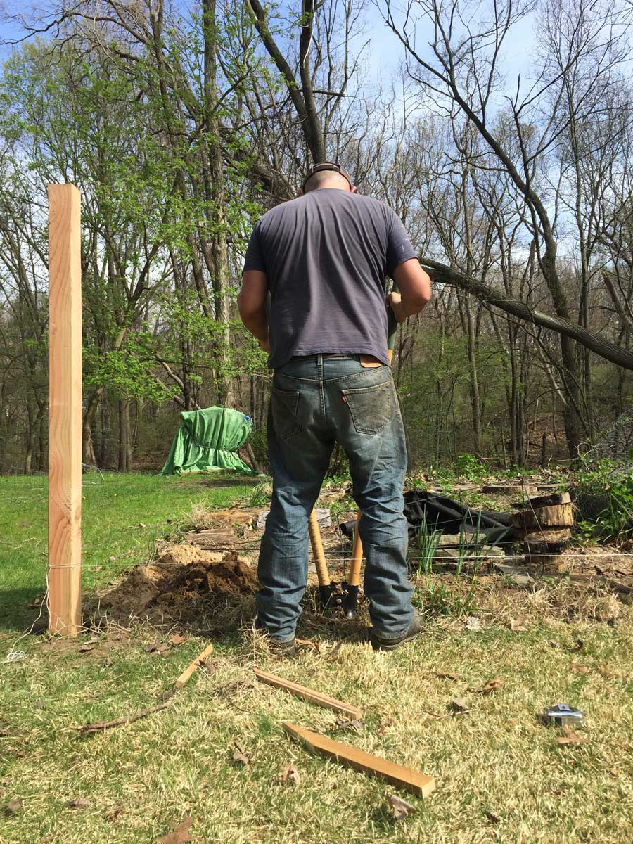 Pete digging holes for our new garden fence posts.