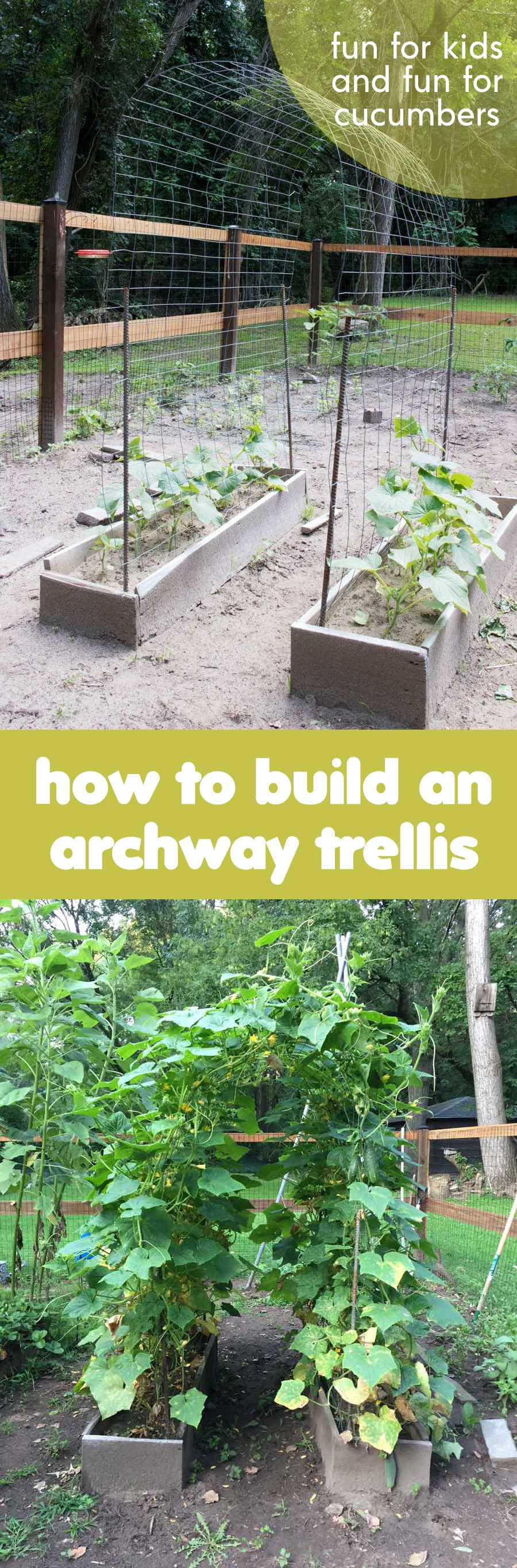 This DIY trellis is fun for kids to play in, and an easy way to grow lots of climbing vines in your garden – perfect for beans, nasturtiums, and cucumbers!