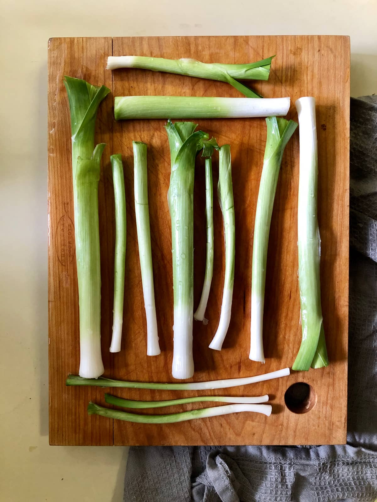 Leeks started from seed, harvested, and cleaned.